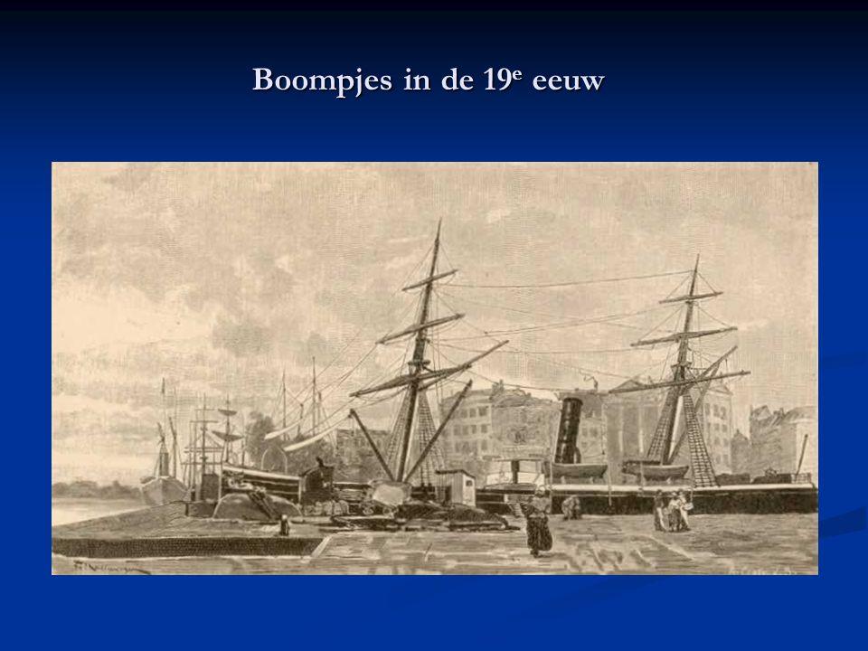 Boompjes in de 19 e eeuw