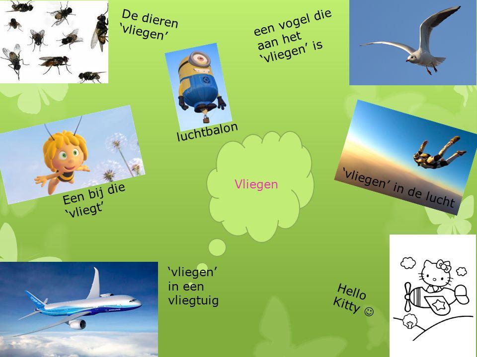 Vliegen De dieren 'vliegen' in een vliegtuig een vogel die aan het 'vliegen' is Hello Kitty Een bij die 'vliegt' 'vliegen' in de lucht luchtbalon