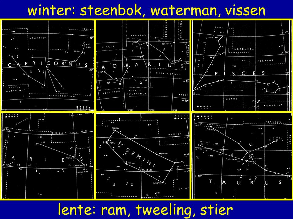 winter: steenbok, waterman, vissen lente: ram, tweeling, stier