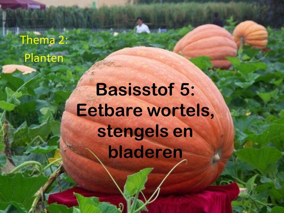 Basisstof 5: Eetbare wortels, stengels en bladeren Thema 2: Planten