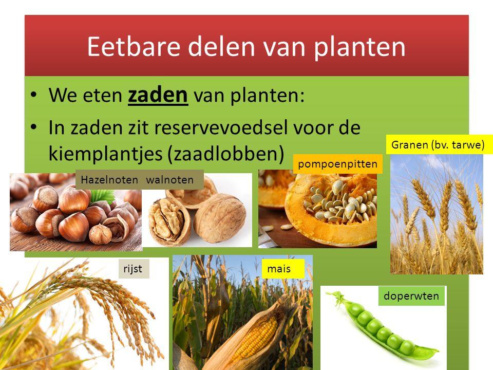 Eetbare delen van planten We eten zaden van planten: In zaden zit reservevoedsel voor de kiemplantjes (zaadlobben) We eten zaden van planten: In zaden