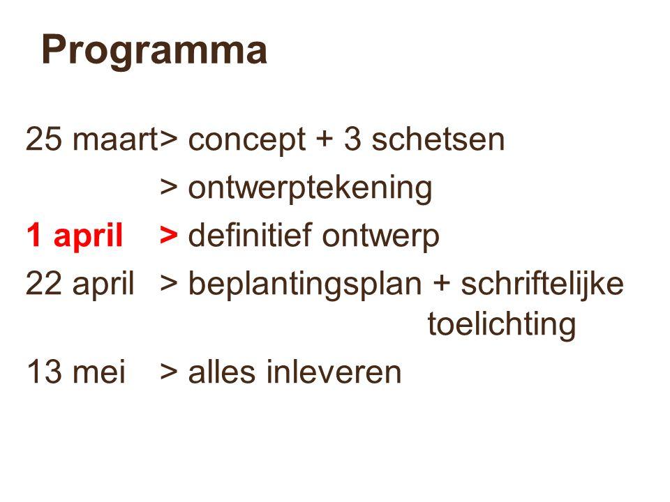Programma 25 maart> concept + 3 schetsen > ontwerptekening 1 april> definitief ontwerp 22 april> beplantingsplan + schriftelijke toelichting 13 mei> alles inleveren