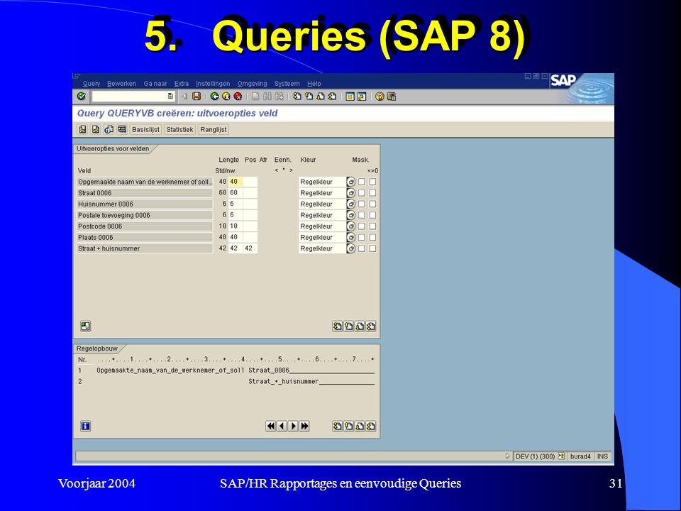 Voorjaar 2004SAP/HR Rapportages en eenvoudige Queries31 5.Queries (SAP 8)