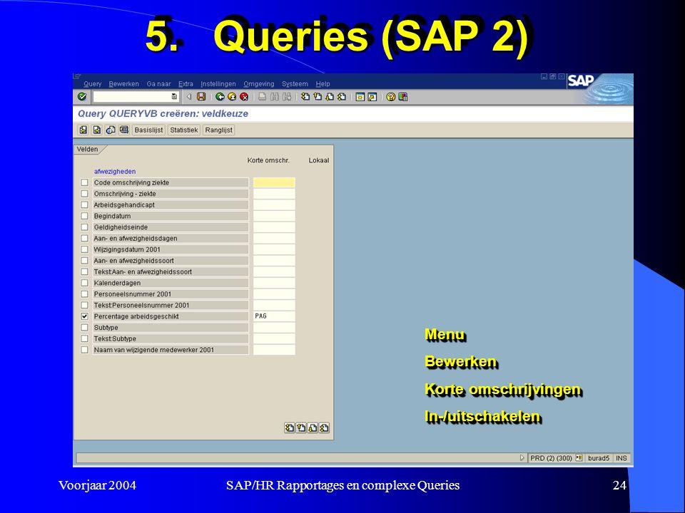 Voorjaar 2004SAP/HR Rapportages en complexe Queries24 5.Queries (SAP 2) MenuBewerken Korte omschrijvingen In-/uitschakelenMenuBewerken In-/uitschakelen