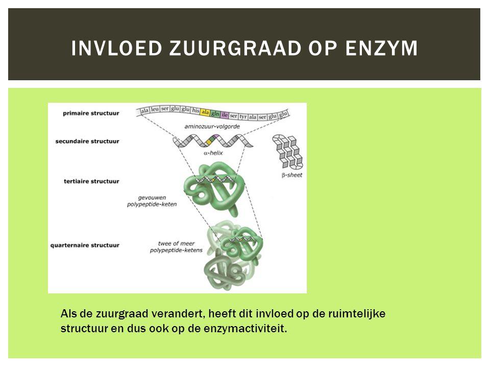 INVLOED ZUURGRAAD OP ENZYM Als de zuurgraad verandert, heeft dit invloed op de ruimtelijke structuur en dus ook op de enzymactiviteit.