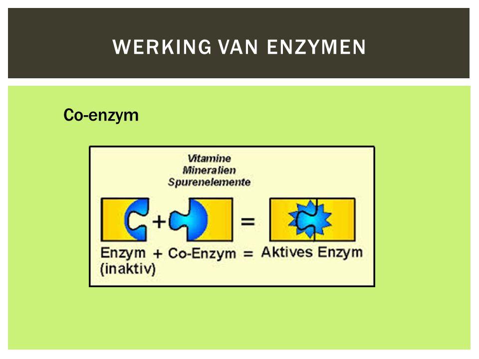 Co-enzym WERKING VAN ENZYMEN