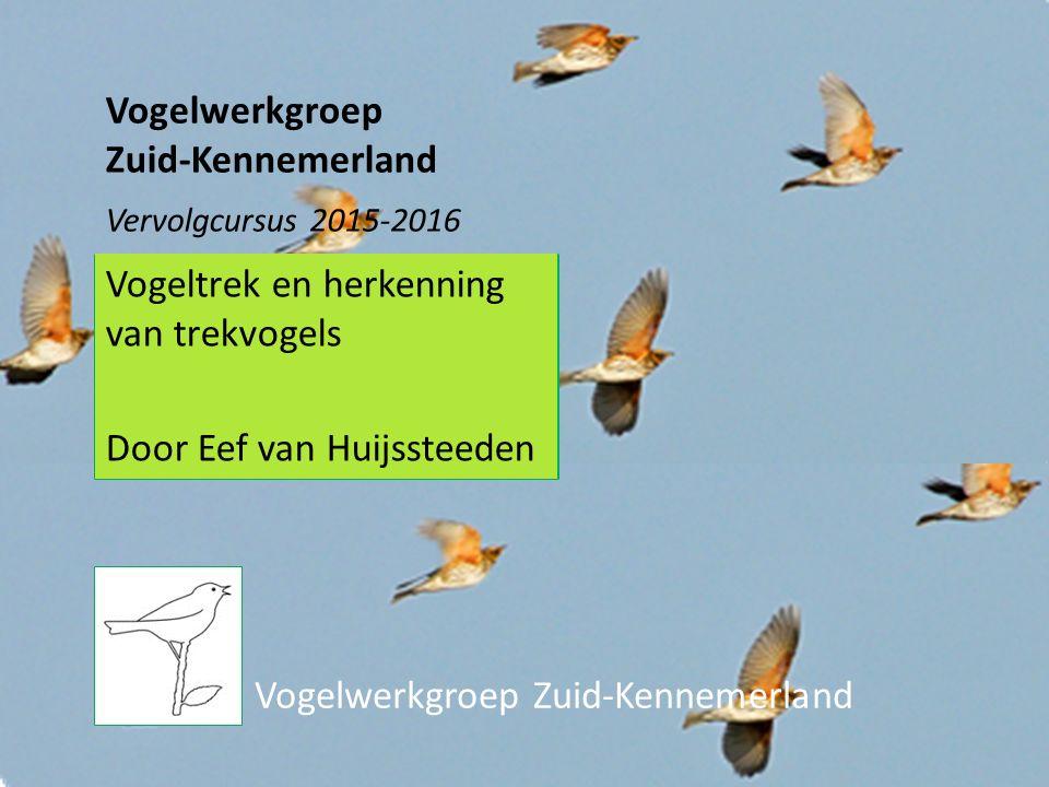 Vogelwerkgroep Zuid-Kennemerland Vogelwerkgroep Zuid-Kennemerland Vervolgcursus 2015-2016 Vogeltrek en herkenning van trekvogels Door Eef van Huijssteeden