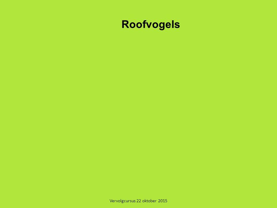 Vervolgcursus 22 oktober 2015 Roofvogels