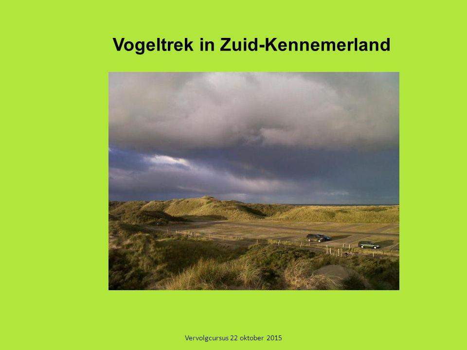Vervolgcursus 22 oktober 2015 Vogeltrek in Zuid-Kennemerland