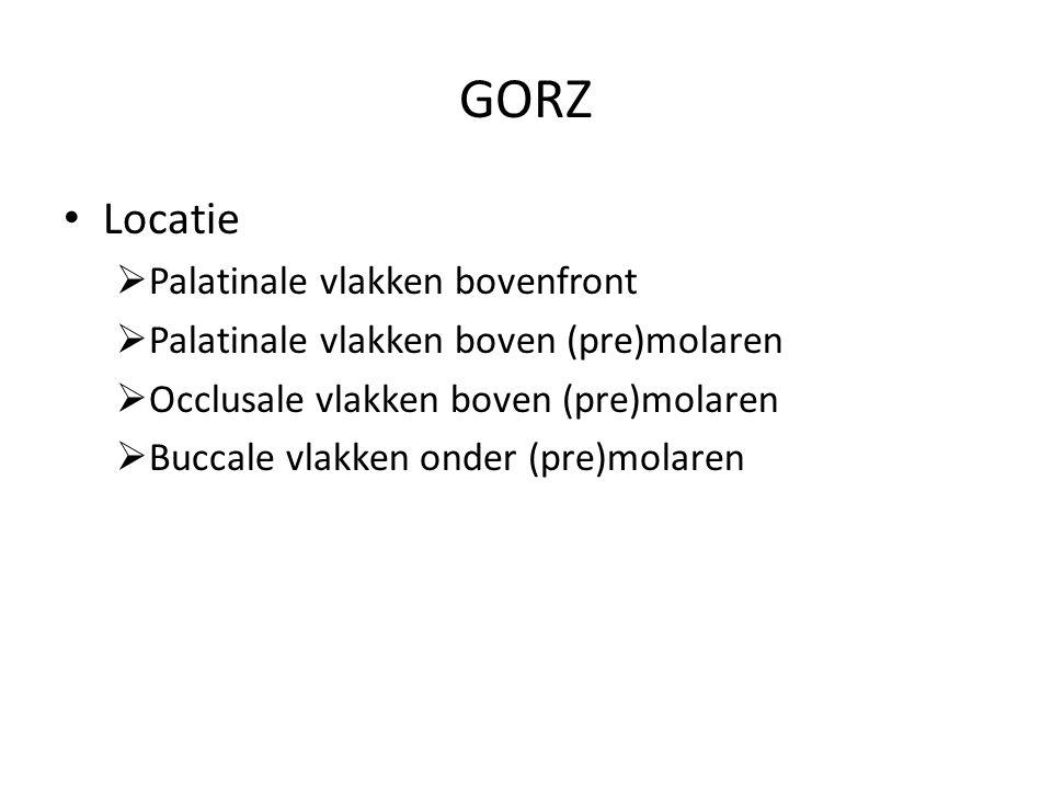 GORZ Locatie  Palatinale vlakken bovenfront  Palatinale vlakken boven (pre)molaren  Occlusale vlakken boven (pre)molaren  Buccale vlakken onder (pre)molaren