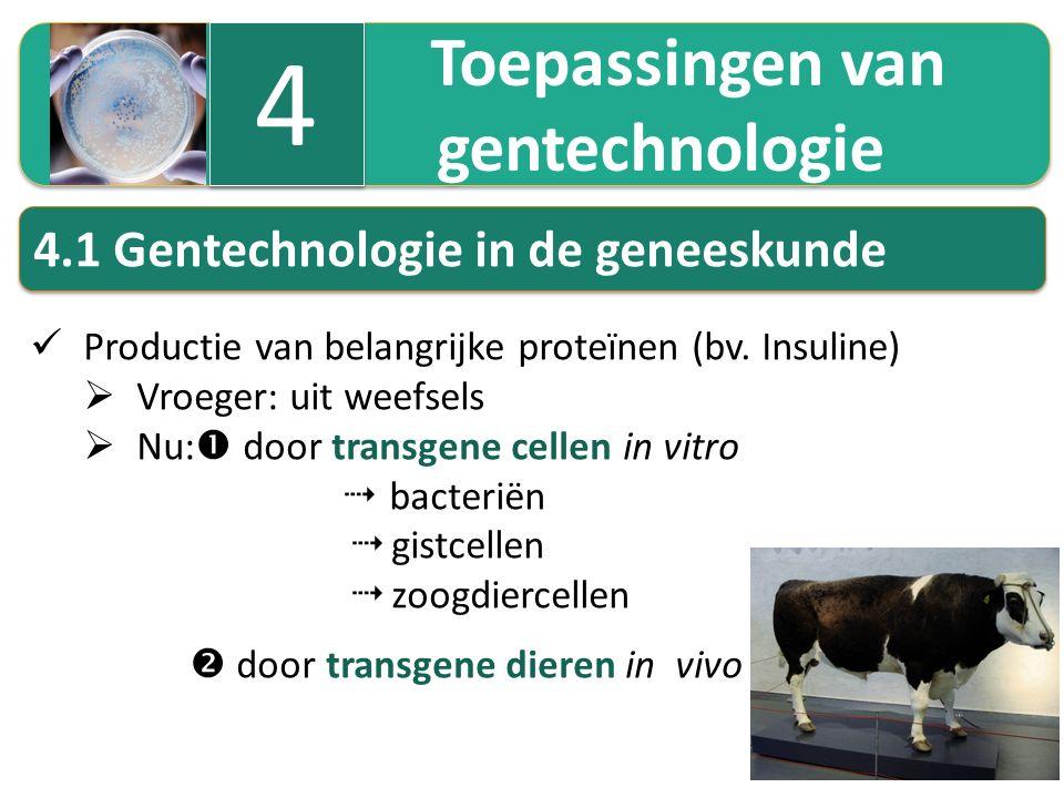 Toepassingen van gentechnologie Toepassingen van gentechnologie 4 4 4.1 Gentechnologie in de geneeskunde Productie van belangrijke proteïnen (bv. Insu
