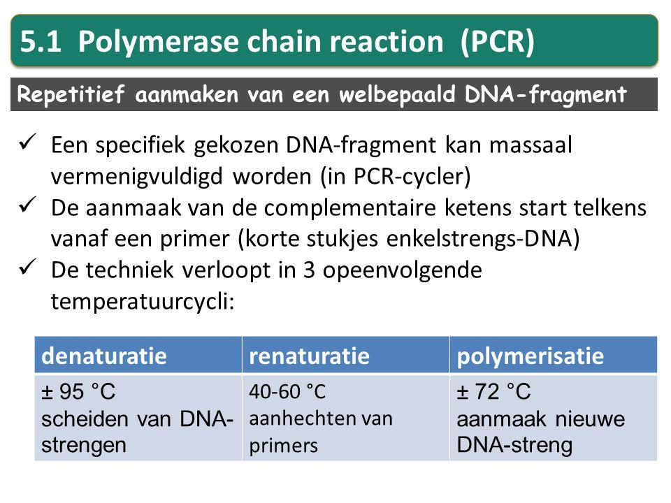 5.1 Polymerase chain reaction (PCR) Repetitief aanmaken van een welbepaald DNA-fragment Een specifiek gekozen DNA-fragment kan massaal vermenigvuldigd