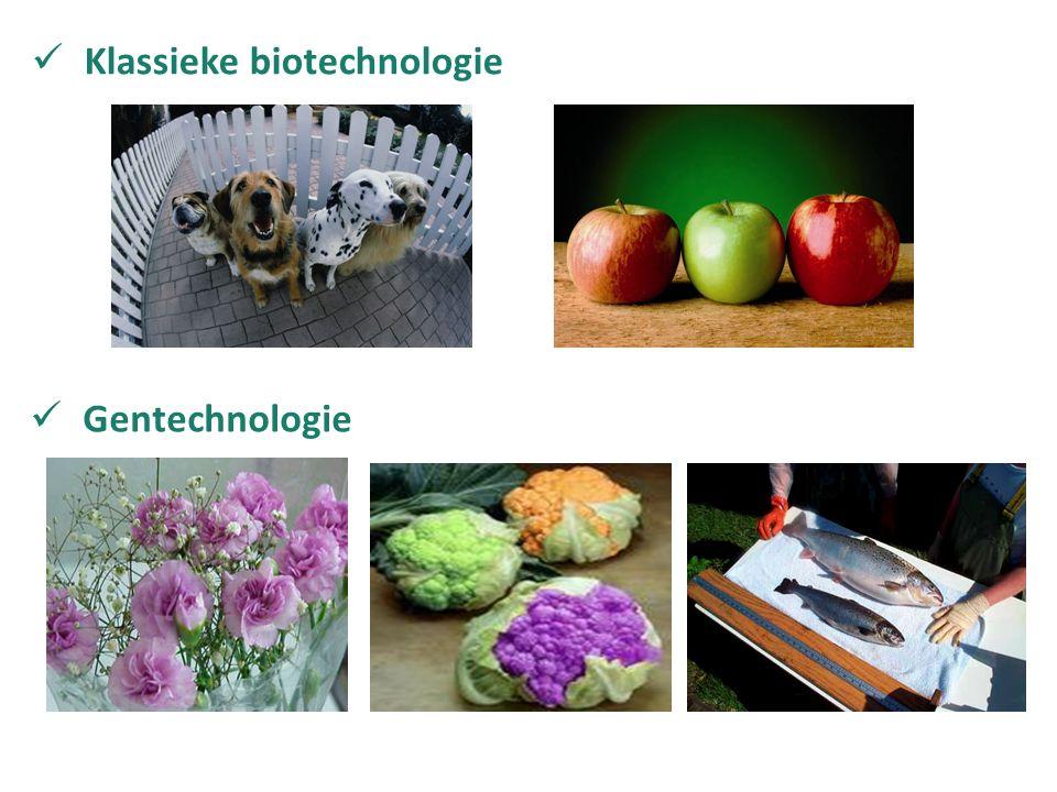Klassieke biotechnologie Gentechnologie