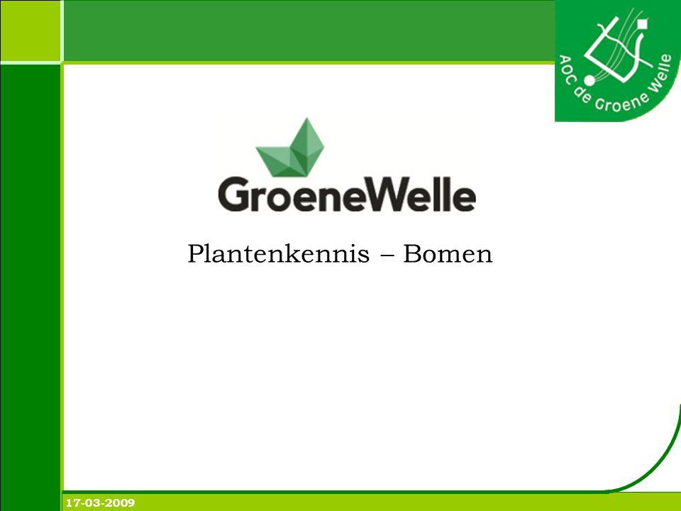Plantenkennis 8