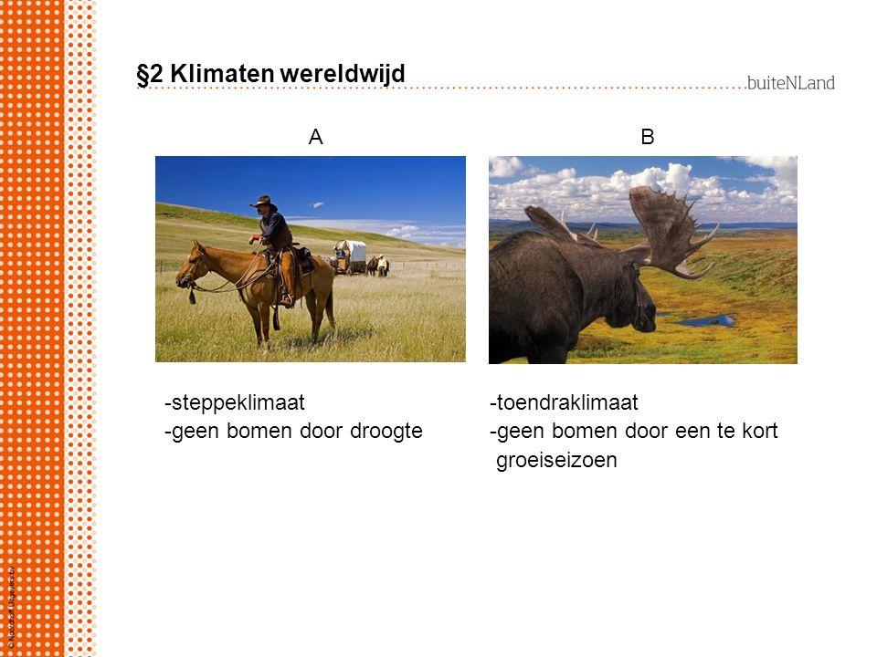§2 Klimaten wereldwijd -steppeklimaat -toendraklimaat -geen bomen door droogte -geen bomen door een te kort groeiseizoen A B