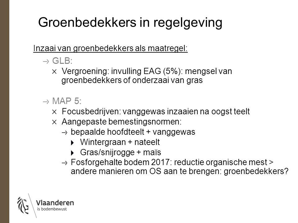 Groenbedekkers in regelgeving Inzaai van groenbedekkers als maatregel: GLB: Vergroening: invulling EAG (5%): mengsel van groenbedekkers of onderzaai v