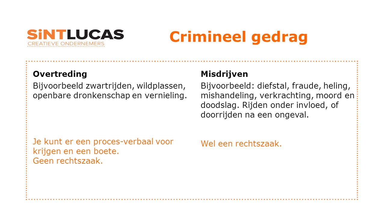 Crimineel gedrag Overtreding Bijvoorbeeld zwartrijden, wildplassen, openbare dronkenschap en vernieling.