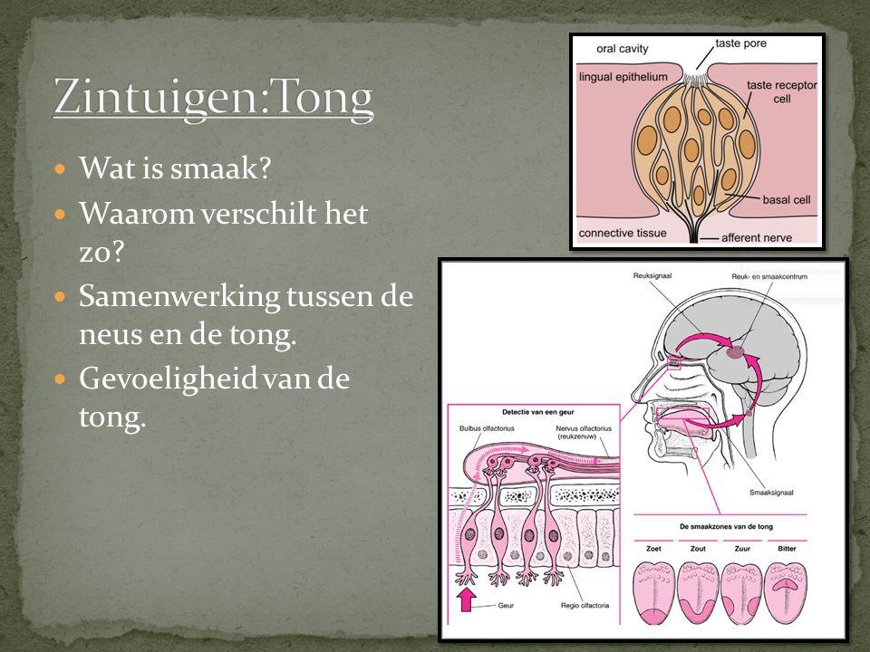 Wat is smaak? Waarom verschilt het zo? Samenwerking tussen de neus en de tong. Gevoeligheid van de tong.