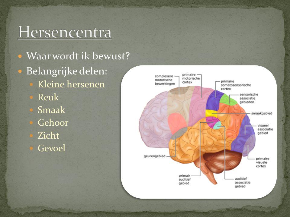 Waar wordt ik bewust? Belangrijke delen: Kleine hersenen Reuk Smaak Gehoor Zicht Gevoel