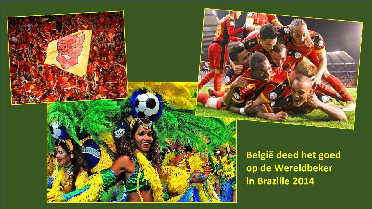België deed het goed op de Wereldbeker in Brazilie 2014