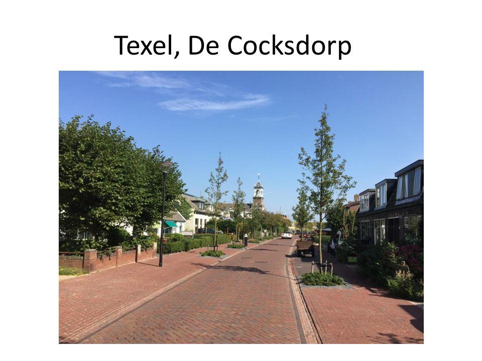 Texel, De Cocksdorp