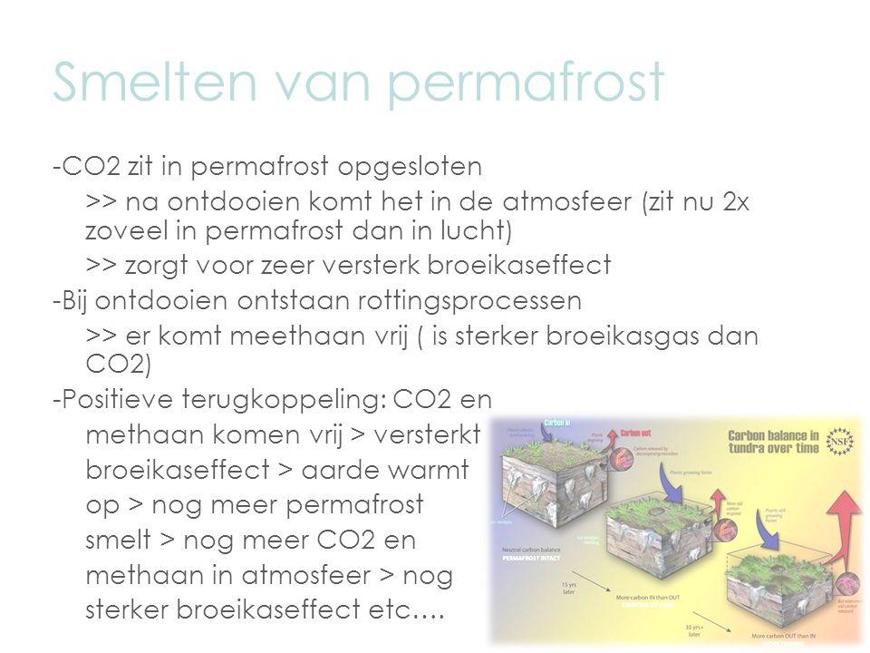 Smelten van permafrost -CO2 zit in permafrost opgesloten >> na ontdooien komt het in de atmosfeer (zit nu 2x zoveel in permafrost dan in lucht) >> zorgt voor zeer versterk broeikaseffect -Bij ontdooien ontstaan rottingsprocessen >> er komt meethaan vrij ( is sterker broeikasgas dan CO2) -Positieve terugkoppeling: CO2 en methaan komen vrij > versterkt broeikaseffect > aarde warmt op > nog meer permafrost smelt > nog meer CO2 en methaan in atmosfeer > nog sterker broeikaseffect etc….