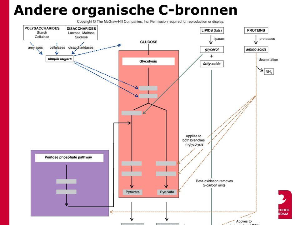 Andere organische C-bronnen