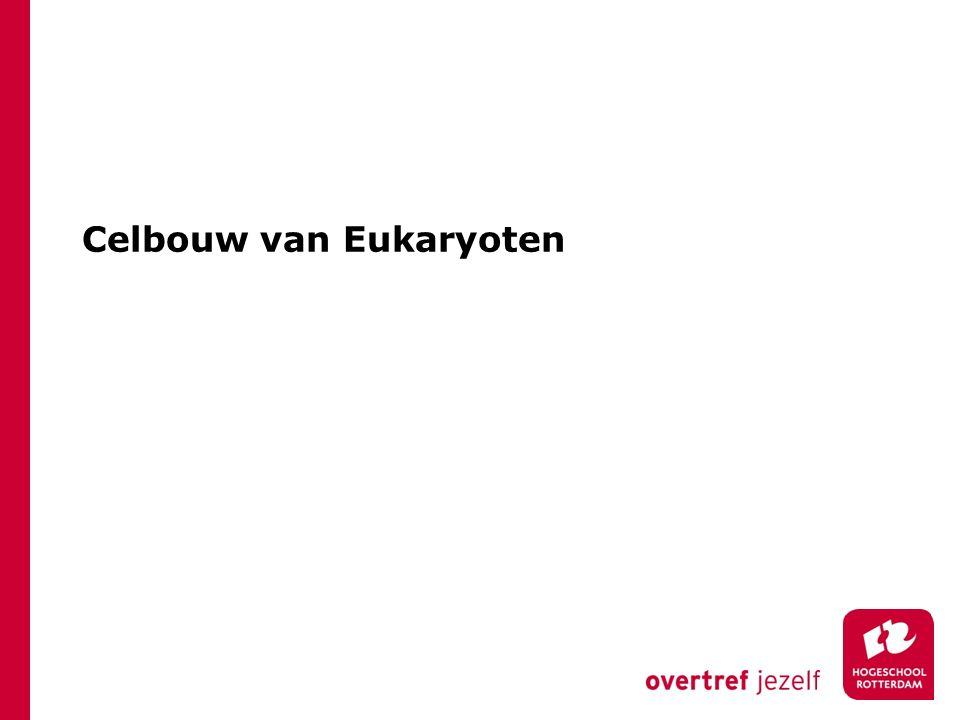 Celbouw van Eukaryoten