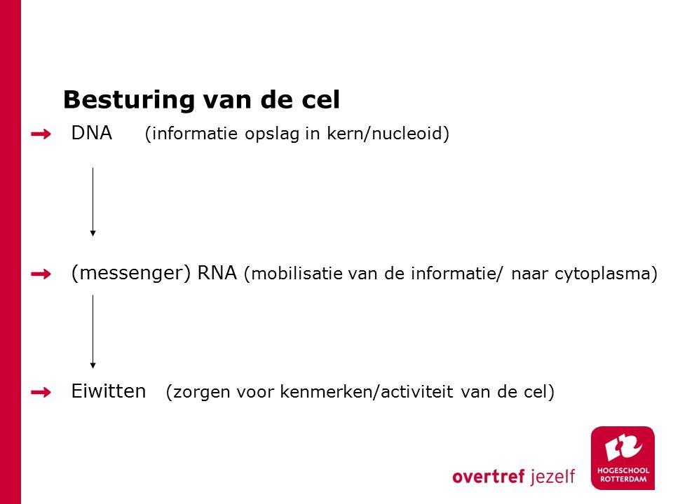 Besturing van de cel DNA (informatie opslag in kern/nucleoid) (messenger) RNA (mobilisatie van de informatie/ naar cytoplasma) Eiwitten (zorgen voor kenmerken/activiteit van de cel)