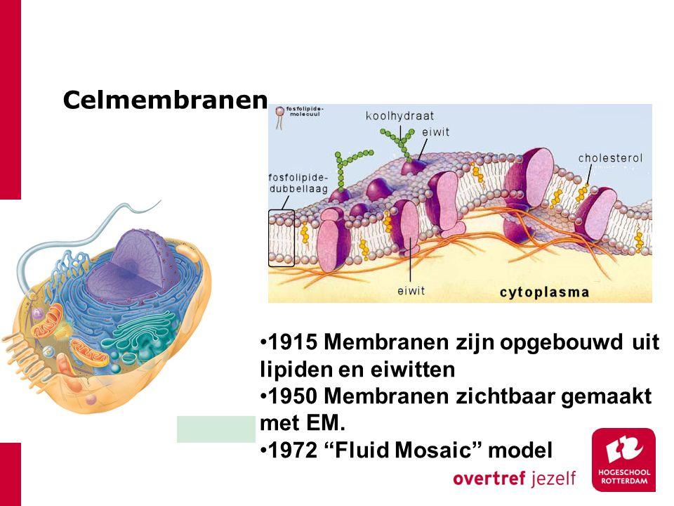 """Celmembranen 1915 Membranen zijn opgebouwd uit lipiden en eiwitten 1950 Membranen zichtbaar gemaakt met EM. 1972 """"Fluid Mosaic"""" model"""