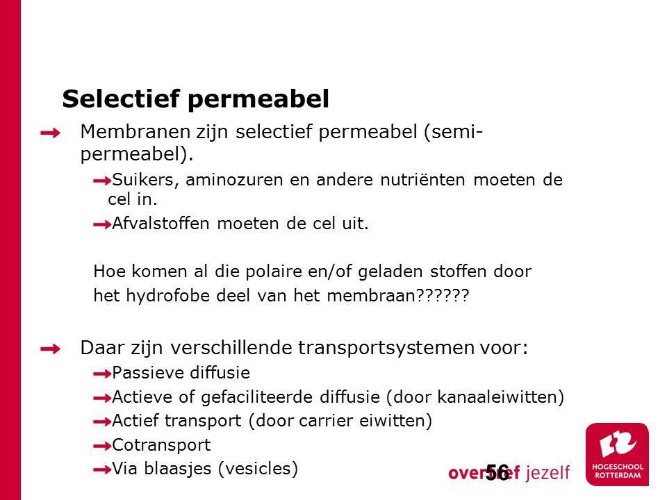 Selectief permeabel Membranen zijn selectief permeabel (semi- permeabel). Suikers, aminozuren en andere nutriënten moeten de cel in. Afvalstoffen moet