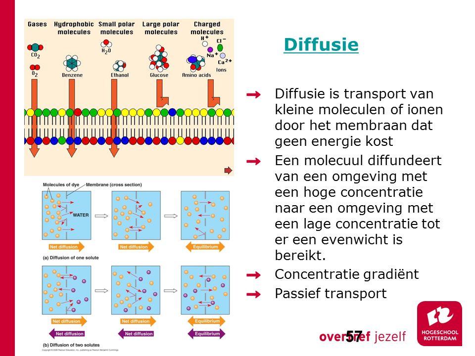 Diffusie Diffusie is transport van kleine moleculen of ionen door het membraan dat geen energie kost Een molecuul diffundeert van een omgeving met een hoge concentratie naar een omgeving met een lage concentratie tot er een evenwicht is bereikt.