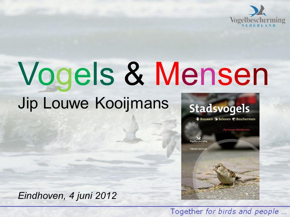 Vogels & Mensen Jip Louwe Kooijmans Eindhoven, 4 juni 2012