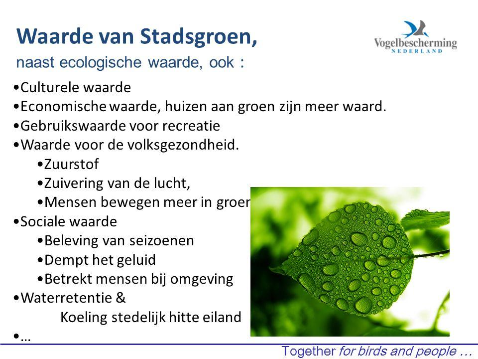 Waarde van Stadsgroen, naast ecologische waarde, ook : Culturele waarde Economische waarde, huizen aan groen zijn meer waard.