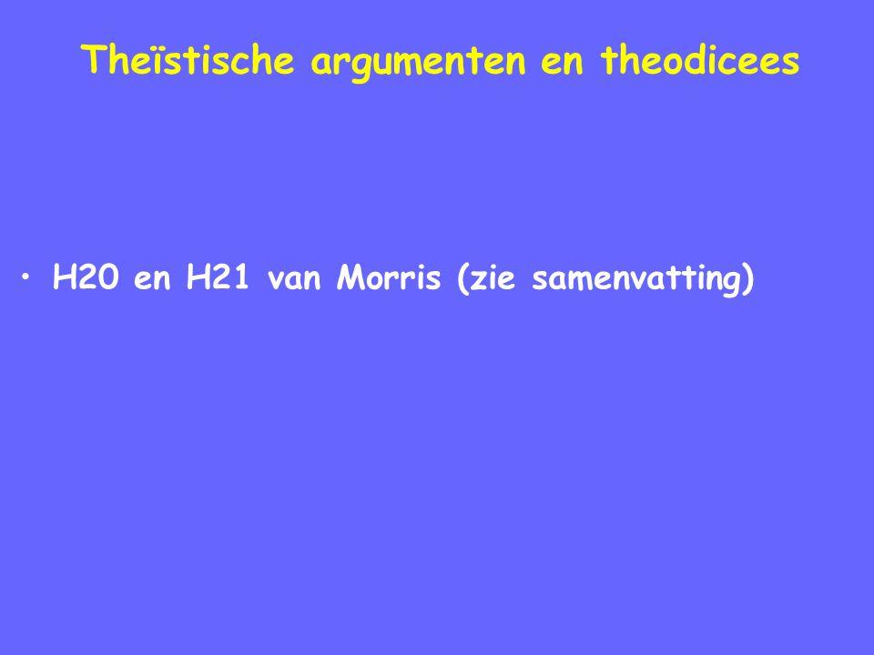 Theïstische argumenten en theodicees H20 en H21 van Morris (zie samenvatting)
