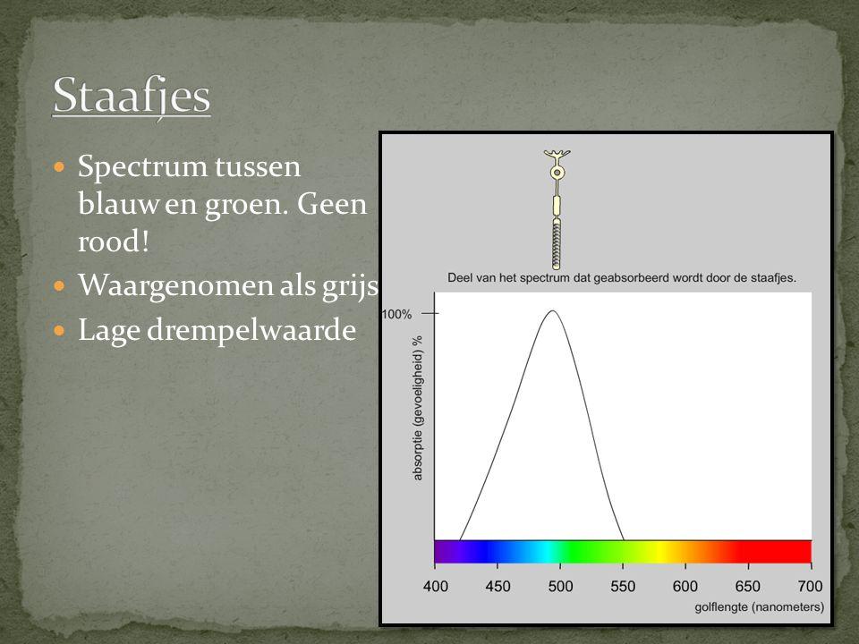 Spectrum tussen blauw en groen. Geen rood! Waargenomen als grijs. Lage drempelwaarde