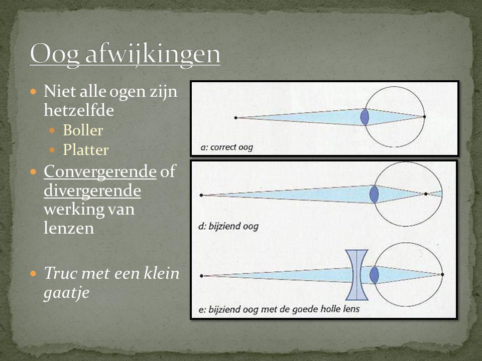 Niet alle ogen zijn hetzelfde Boller Platter Convergerende of divergerende werking van lenzen Truc met een klein gaatje