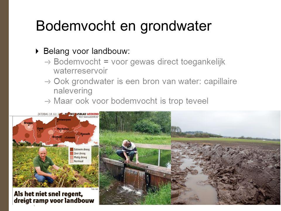 Bodemvocht en grondwater Belang voor landbouw: Bodemvocht = voor gewas direct toegankelijk waterreservoir Ook grondwater is een bron van water: capillaire nalevering Maar ook voor bodemvocht is trop teveel