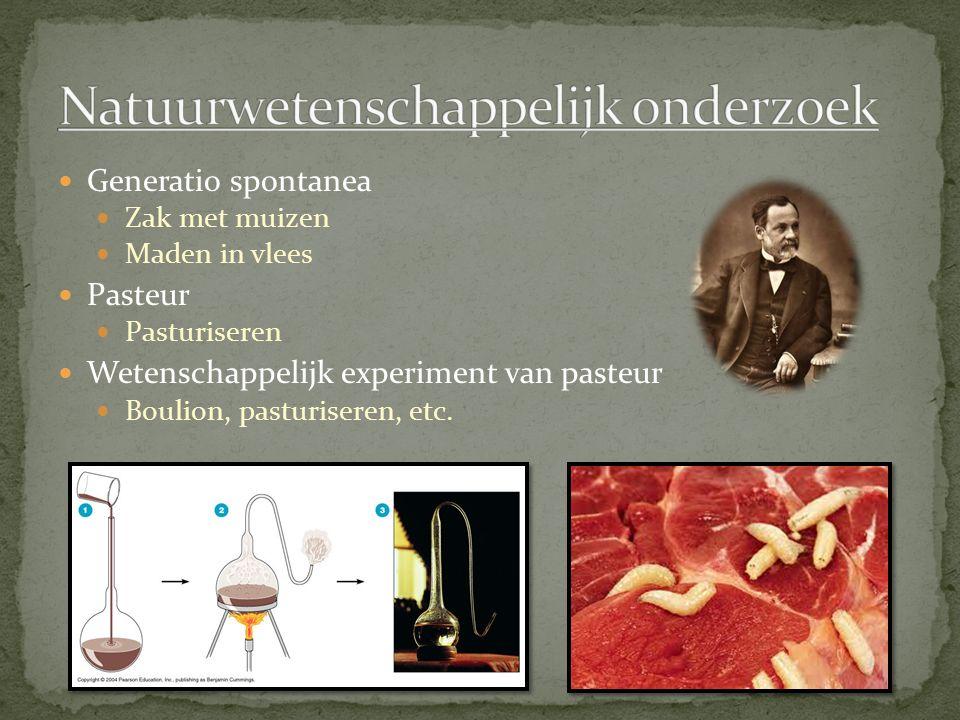 Generatio spontanea Zak met muizen Maden in vlees Pasteur Pasturiseren Wetenschappelijk experiment van pasteur Boulion, pasturiseren, etc.