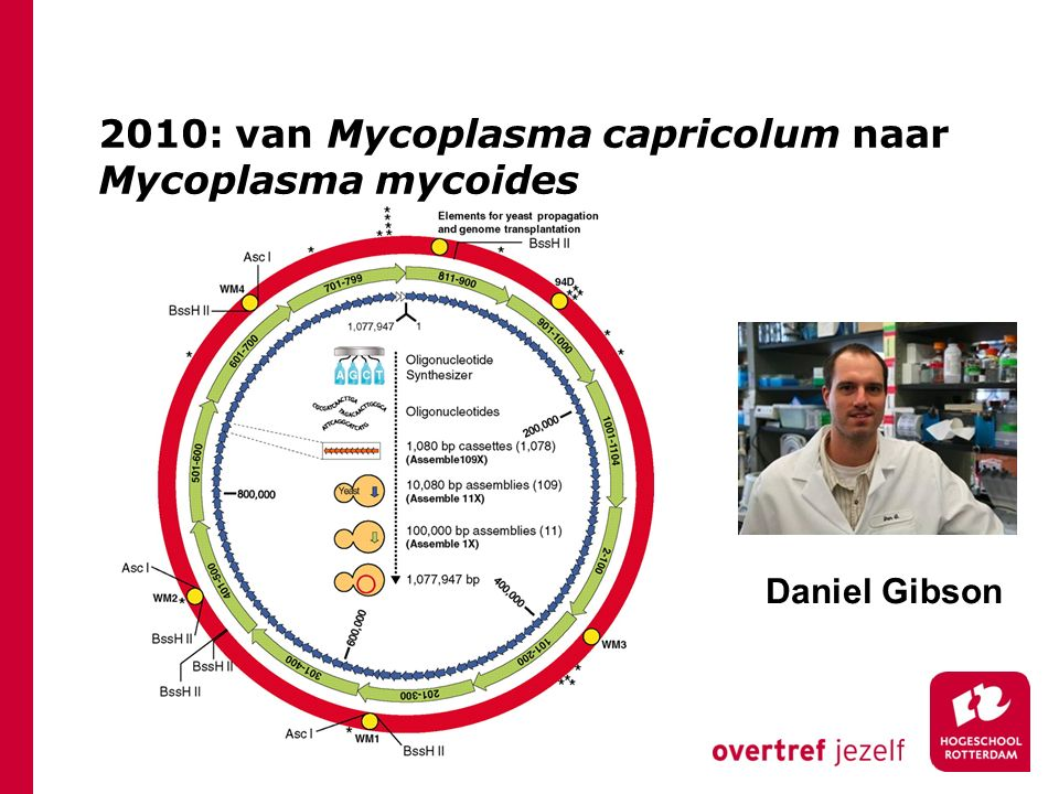 2010: van Mycoplasma capricolum naar Mycoplasma mycoides Daniel Gibson
