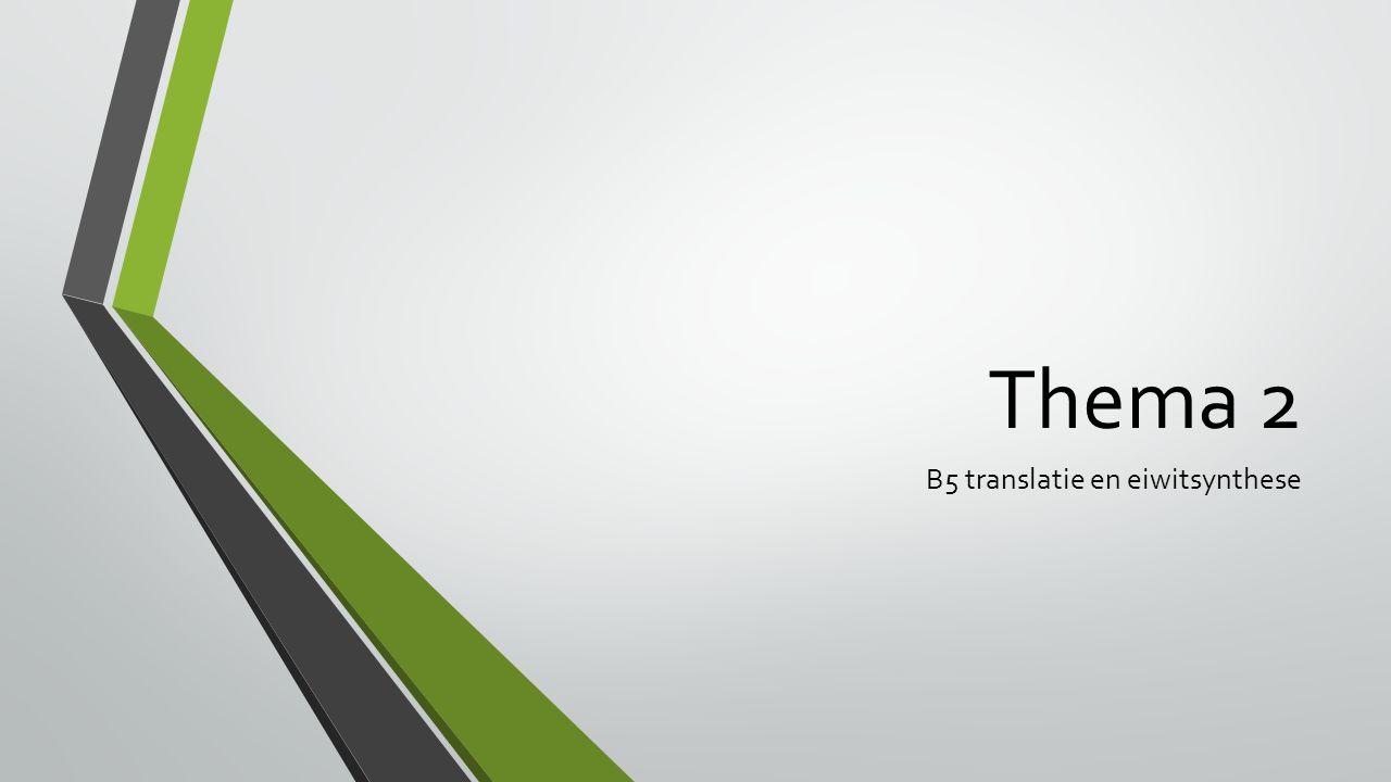 Deze les Uitleg B5 translatie en eiwitsynthese Opdracht eiwitsynthese