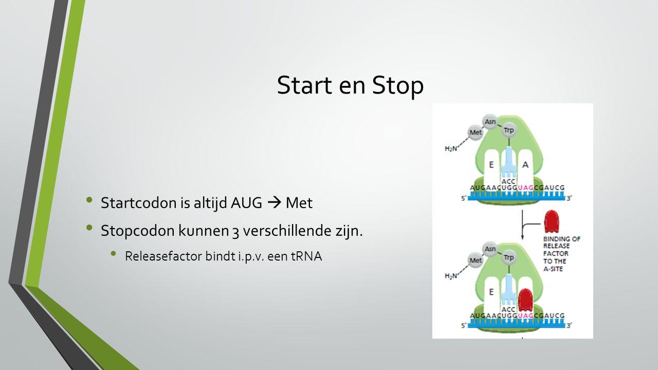 Start en Stop Startcodon is altijd AUG  Met Stopcodon kunnen 3 verschillende zijn.