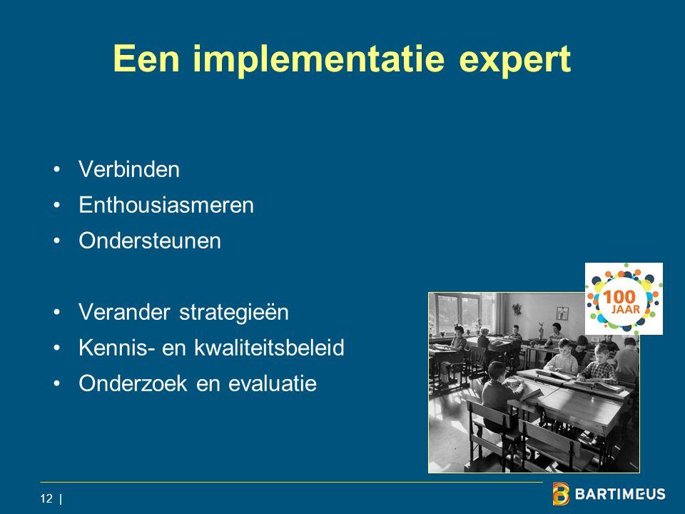 Een implementatie expert Verbinden Enthousiasmeren Ondersteunen Verander strategieën Kennis- en kwaliteitsbeleid Onderzoek en evaluatie 12 |