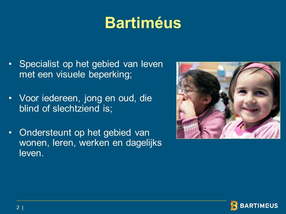 2 | Bartiméus Specialist op het gebied van leven met een visuele beperking; Voor iedereen, jong en oud, die blind of slechtziend is; Ondersteunt op he