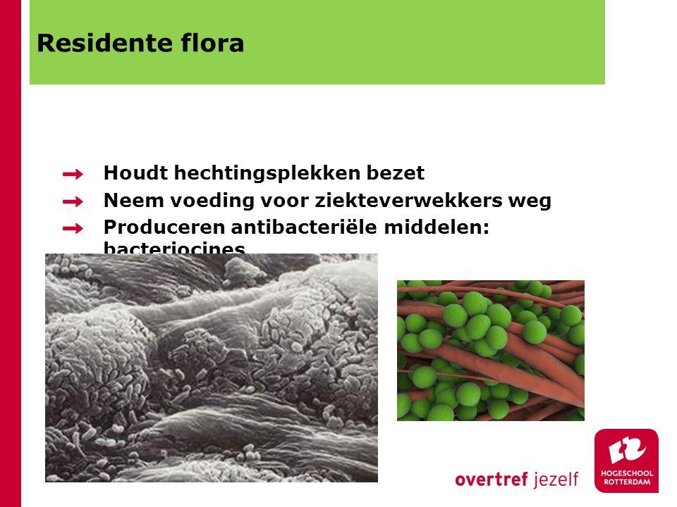 Residente flora Houdt hechtingsplekken bezet Neem voeding voor ziekteverwekkers weg Produceren antibacteriële middelen: bacteriocines
