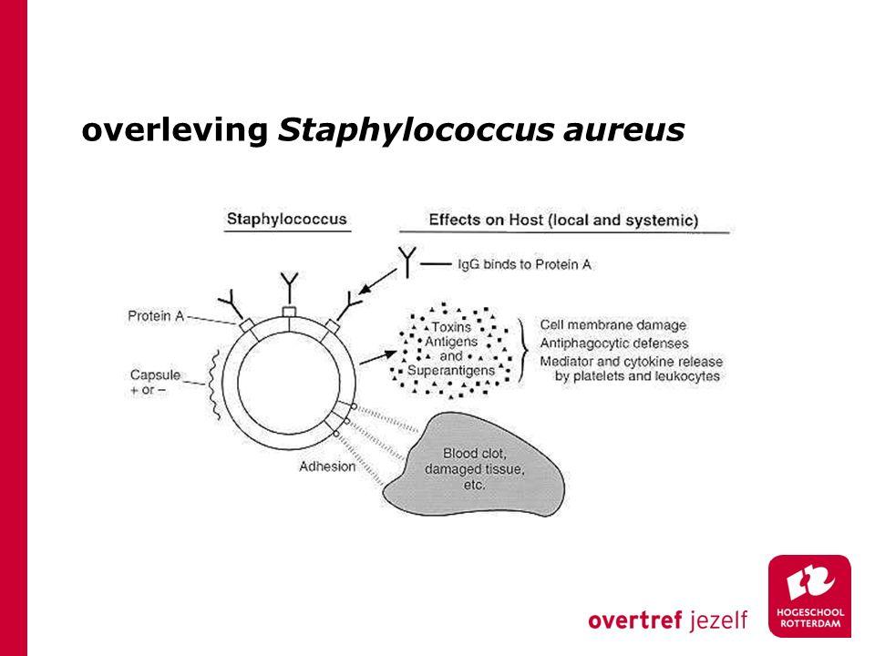 overleving Staphylococcus aureus