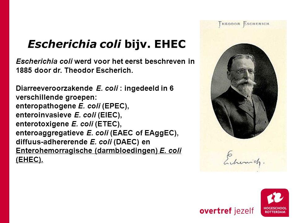 Escherichia coli bijv. EHEC Escherichia coli werd voor het eerst beschreven in 1885 door dr. Theodor Escherich. Diarreeveroorzakende E. coli : ingedee