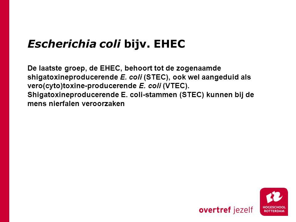 Escherichia coli bijv. EHEC De laatste groep, de EHEC, behoort tot de zogenaamde shigatoxineproducerende E. coli (STEC), ook wel aangeduid als vero(cy