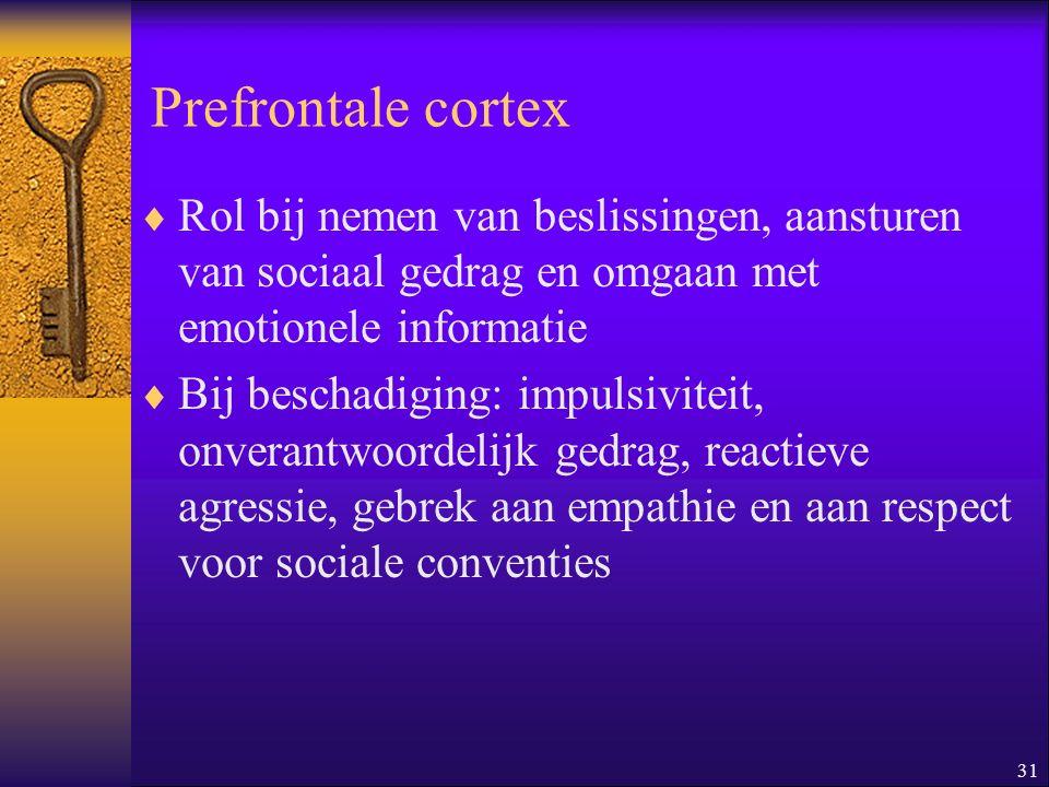 31 Prefrontale cortex  Rol bij nemen van beslissingen, aansturen van sociaal gedrag en omgaan met emotionele informatie  Bij beschadiging: impulsivi