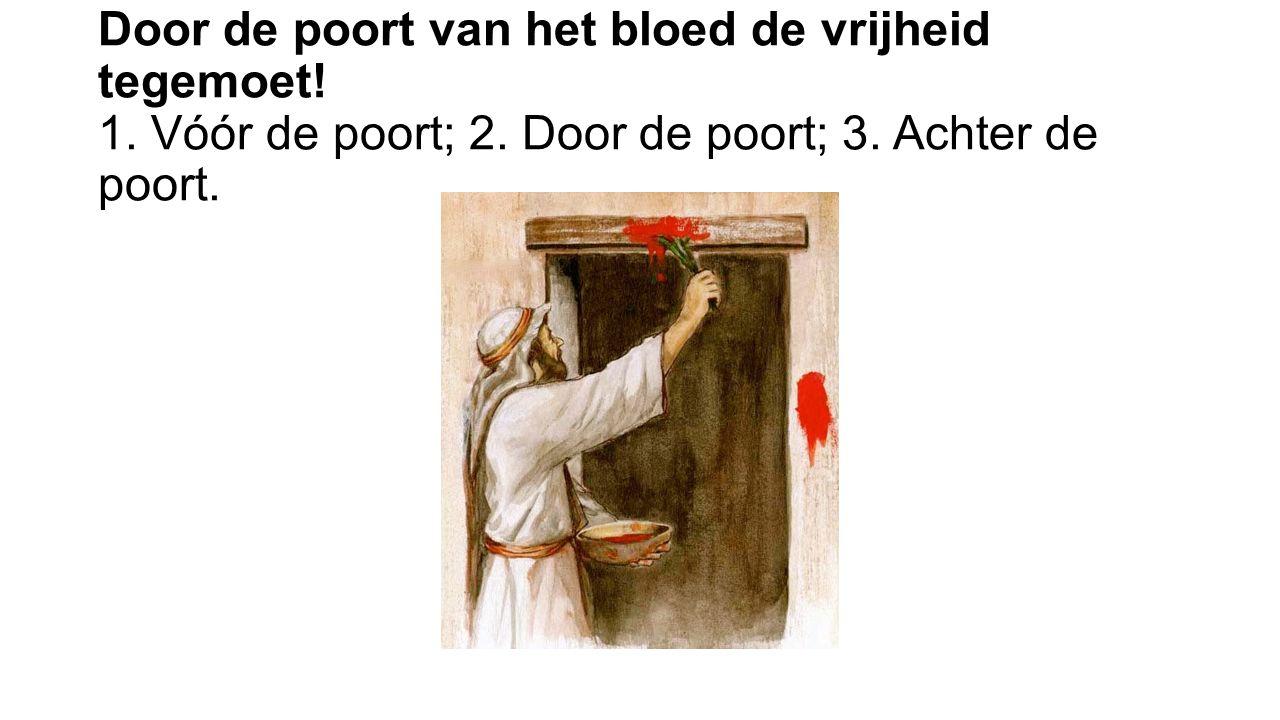 Door de poort van het bloed de vrijheid tegemoet! 1. Vóór de poort; 2. Door de poort; 3. Achter de poort.